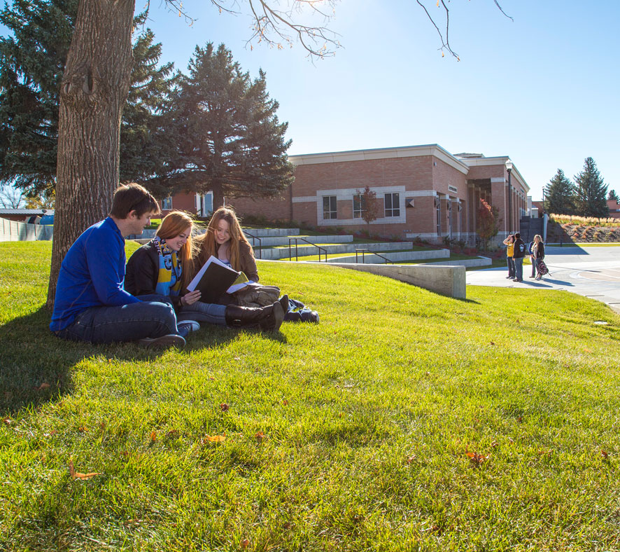 Sheridan College Students studying on Campus