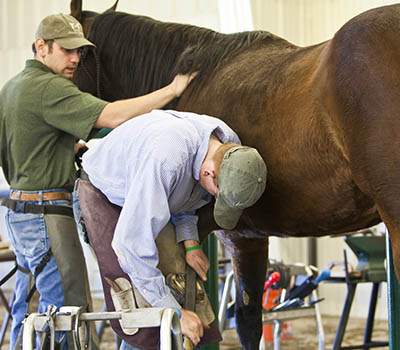 Agriculture Farrier Science at Sheridan College