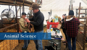 Earn your degree in Animal Science from Sheridan College.