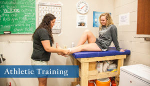Athletic Training degree at Sheridan College.
