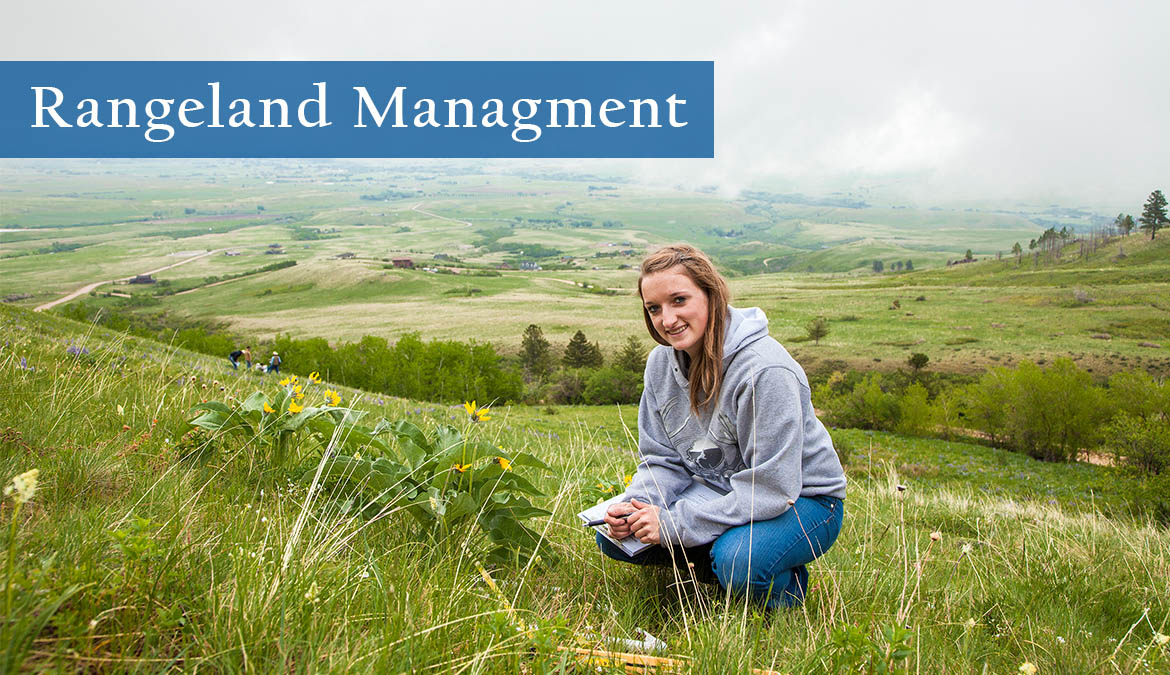 Earn your degree in Rangeland Management from NWCCD.