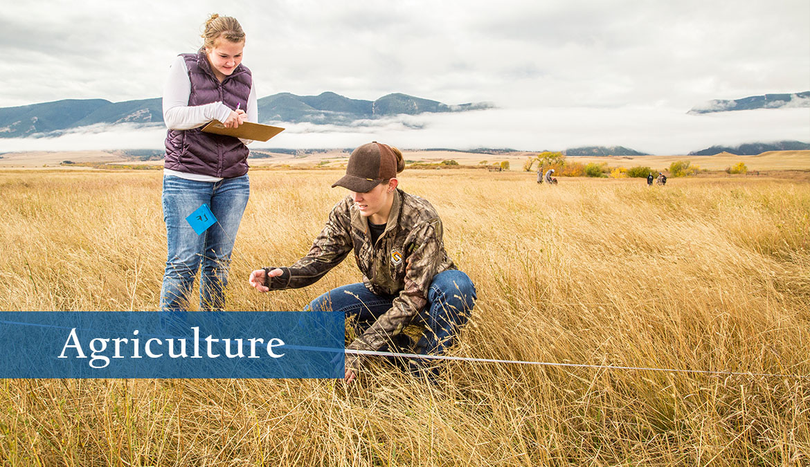 Earn your degree in Agriculture.