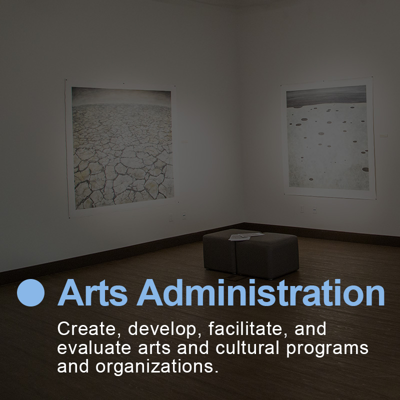 Create, develop, facilitate, and evaluate arts and cultural programs and organizations..